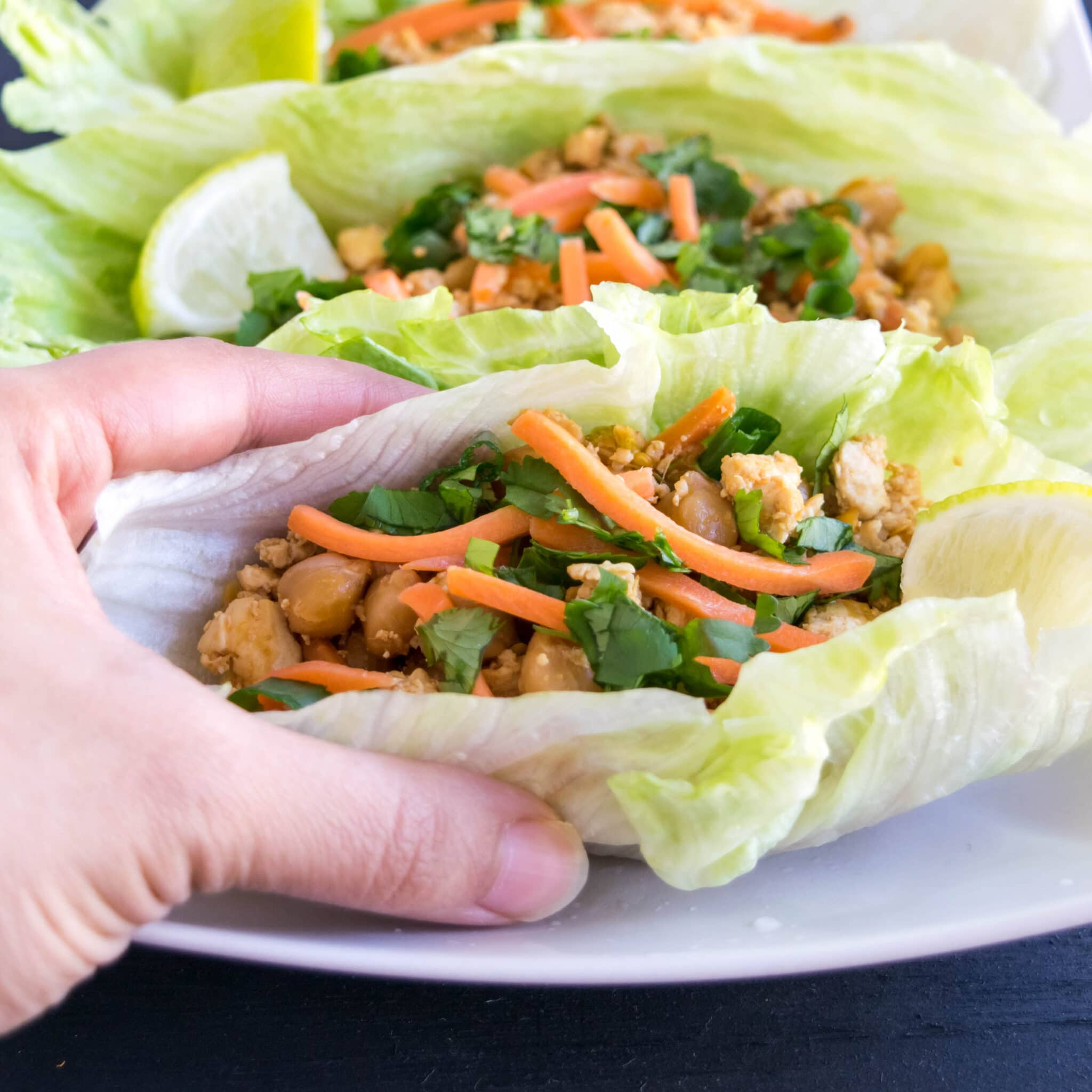 A hand picking up a lettuce wrap is shown in this image.